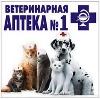 Ветеринарные аптеки в Дебесах
